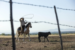 Border Wall: Ranchers
